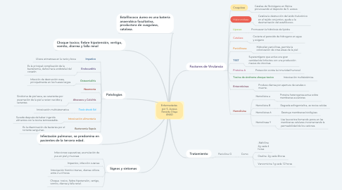 Mind Map: Enfermedades  por S. Aureus Esneidy Olaya UNAD