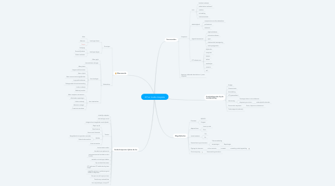 Mind Map: ICT en media integratie