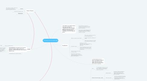 Mind Map: El tiempo en el proceso