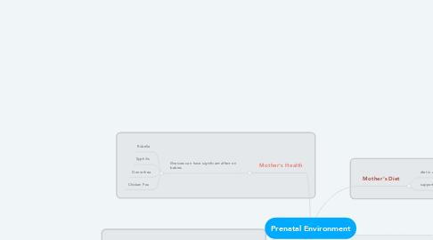 Mind Map: Prenatal Environment