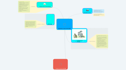 Mind Map: Requisitos norma ISO 45001