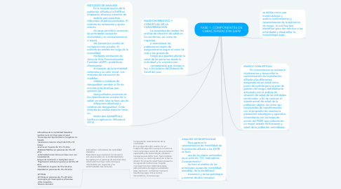 Mind Map: FASE 1: COMPONENTES DE CARACTERIZACIÓN EAPB