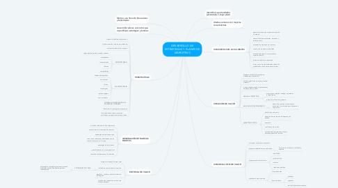 Mind Map: DESARROLLO DE ESTRATEGIAS Y PLANES DE MARKETING