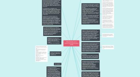 Mind Map: Enfermedades por S. aureus-Paula Andrea Valdes -UNAD