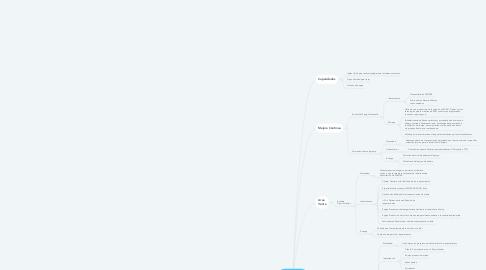 Mind Map: Incorproacion Reinaldo (A)