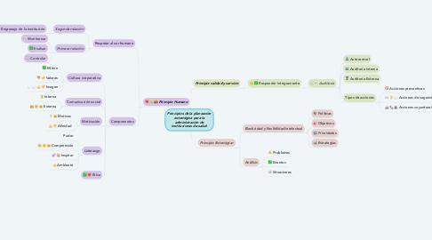 Mind Map: Principios de la planeación estratégica para la administración de instituciones de salud