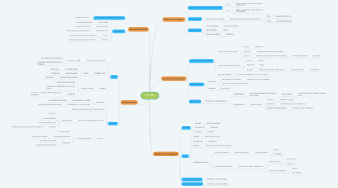 Mind Map: PLATÓN