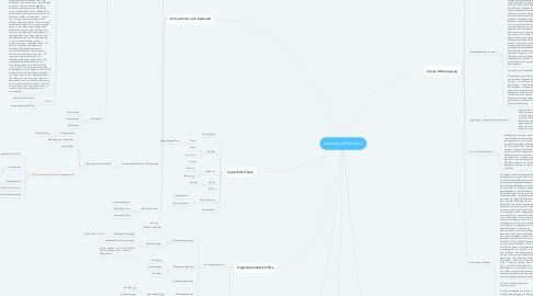 Mind Map: immergrün Handbuch