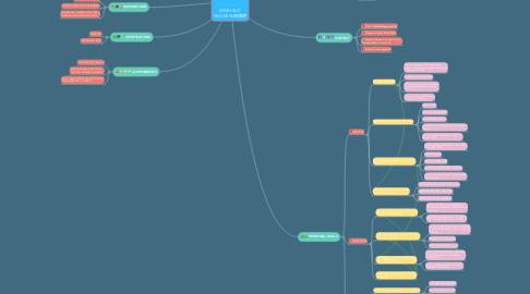 Mind Map: MINH DUC NGUYEN-阮德明