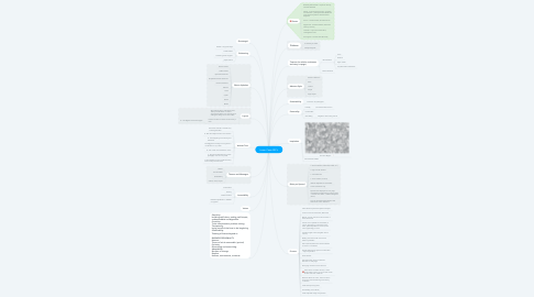 Mind Map: Lower Case ABC's