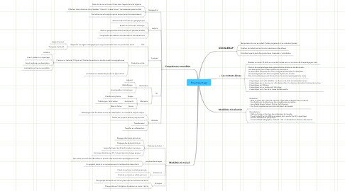 Mind Map: Projet reportage