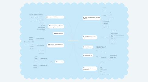 Mind Map: Business Activity
