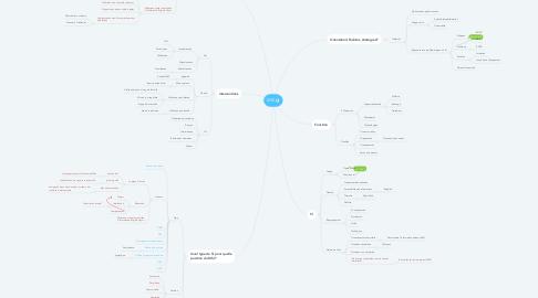 Mind Map: MSI