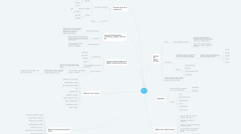 Mind Map: PPT
