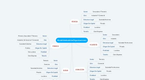Mind Map: ModalidadesdelasOrganizaciones