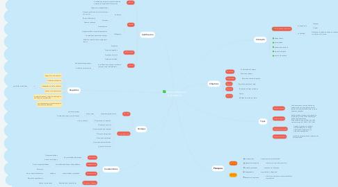 Mind Map: La naturaleza de la Auditoria