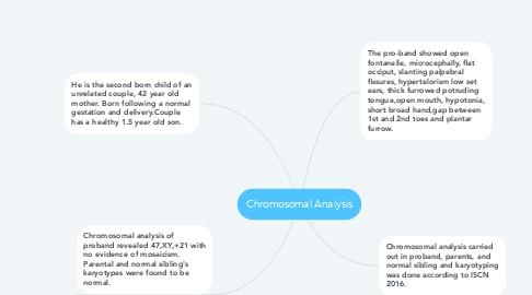 Mind Map: Chromosomal Analysis