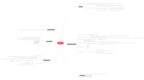 Mind Map: La Perspectiva Piagetiana