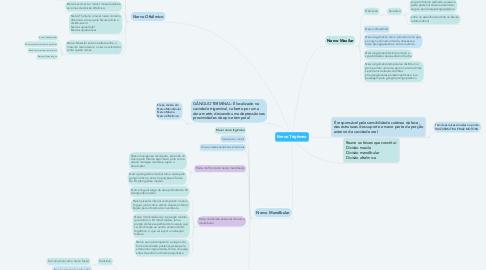 Mind Map: Nervo Trigêmeo