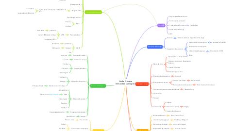 Mind Map: Ecole Primaire Immaculée Conception