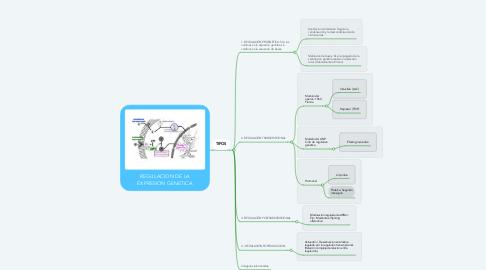Mind Map: REGULACION DE LA EXPRESION GENETICA