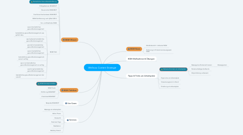 Mind Map: Wellnow Content Strategie