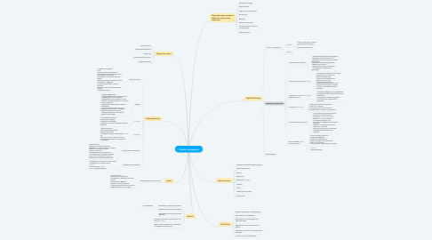 Mind Map: Проект менеджер
