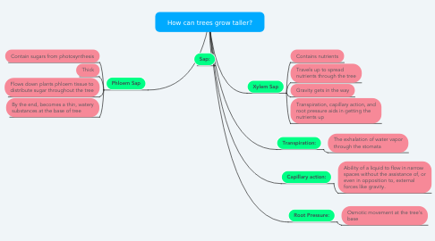 Mind Map: How can trees grow taller?