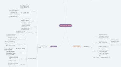 Mind Map: FUNCIONES DEL DINERO