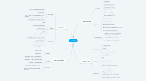 Mind Map: Huidtypes