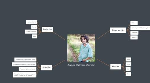 Mind Map: Auggie Pullman- Wonder