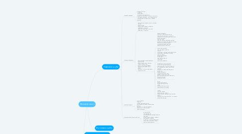 Mind Map: Меховой салон