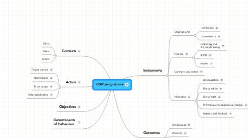 Mind Map: DSM programme