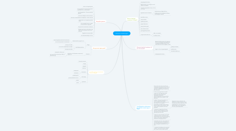 Mind Map: Chinese investeringen