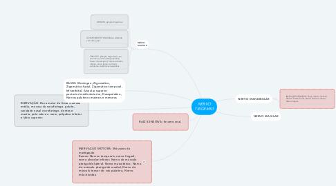 Mind Map: NERVO TRIGEMIO