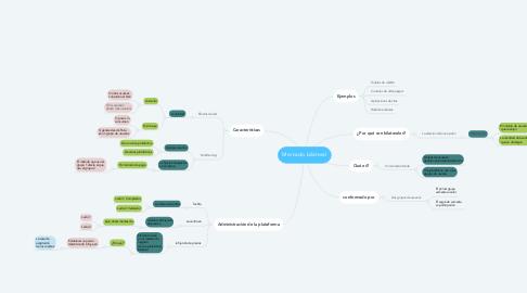 Mind Map: Mercado bilateral