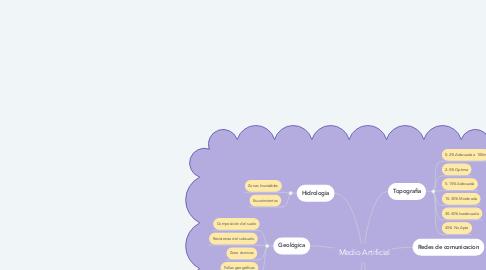 Mind Map: Medio Artificial