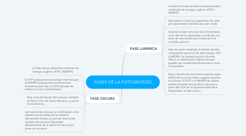 Mind Map: FASES DE LA FOTOSINTESIS