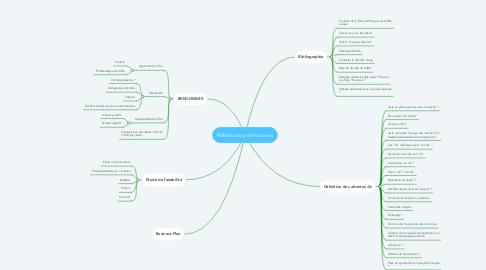 Mind Map: Réflexions préliminaires