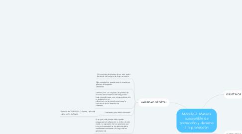 Mind Map: Módulo 2: Materia susceptible de protección y derecho a la protección