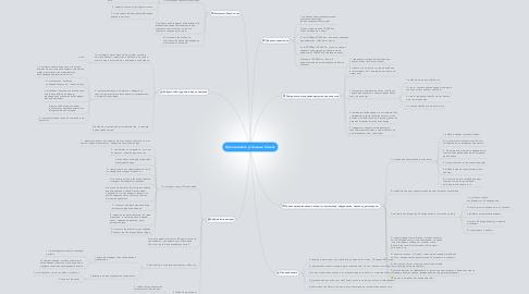 Mind Map: Организовать успешный бизнес