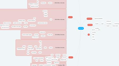 Mind Map: MYCETES