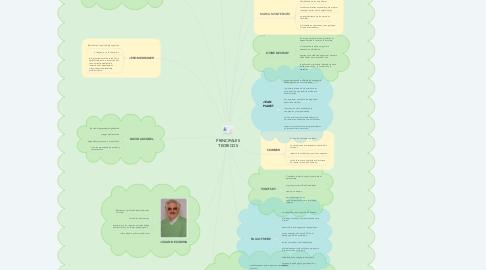 Mind Map: PRINCIPALES TEORICOS