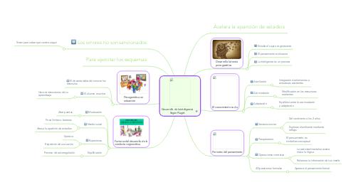 Mind Map: Desarrollo de la inteligencia Según Piaget