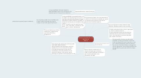 Mind Map: Deberes de protección y los derechos de  defensa.
