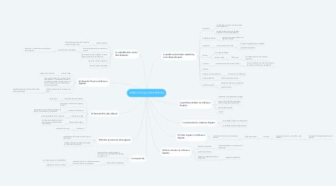 Mind Map: DERECHO NOVOHISPANO