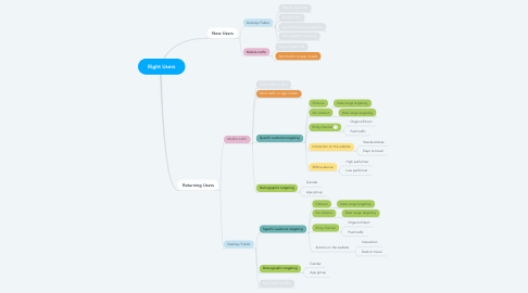 Mind Map: Right Users