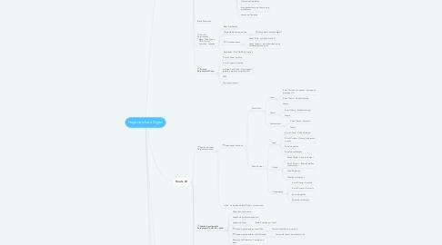 Mind Map: Negócios Auto Digital