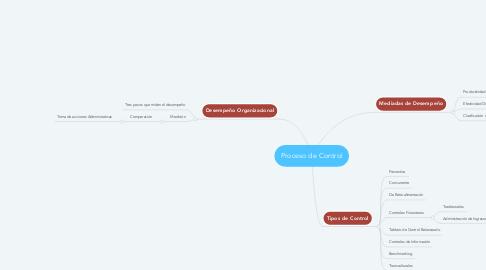 Mind Map: Proceso de Control