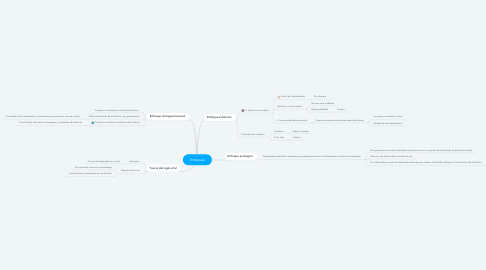 Mind Map: Enfoques